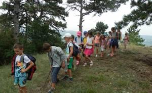Szándékunk az, hogy a nyári tábor alatt egy olyan folyamatot járjanak végig a gyermekek, mely nem csak a természetismeret, hanem az élet más területein is hasznosítható tudásként ragad meg bennük.