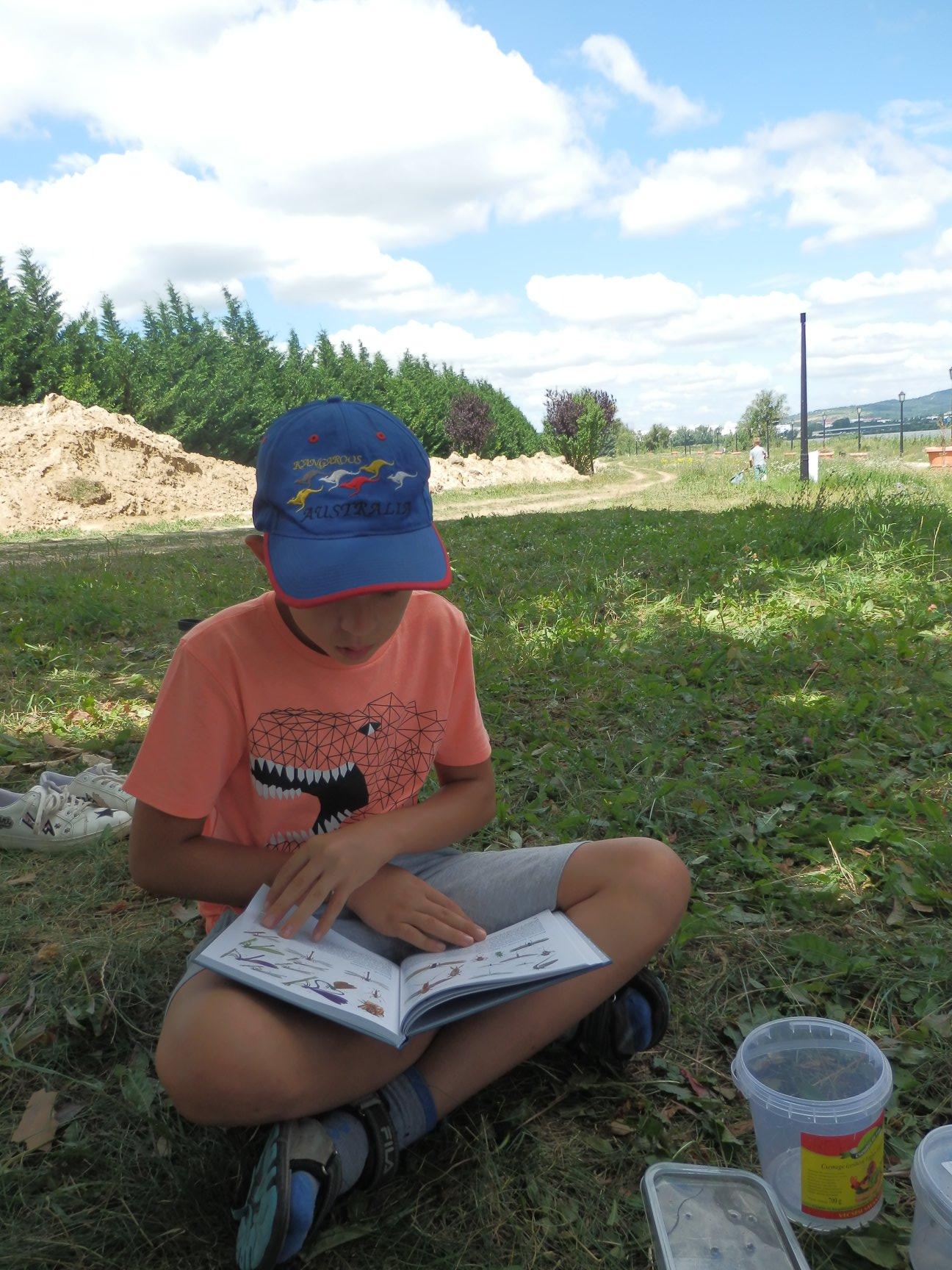 Fürkész tábor a Csiki-hegyekben – Természetismereti és térképész expedíció